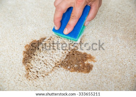 Closeup of man hand cleaning stain on carpet with sponge - stock photo