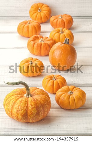 Closeup of mini Pumpkins in a line on Rustic White or Gray Boards Background.  Vertical - stock photo
