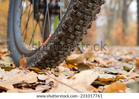 Closeup of mountain bike in autumn forest  - stock photo