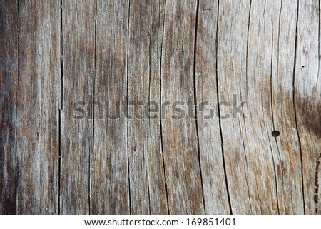 closeup of old wood - stock photo