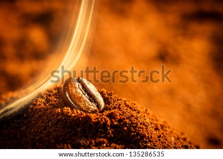 Closeup of one coffee beans - stock photo