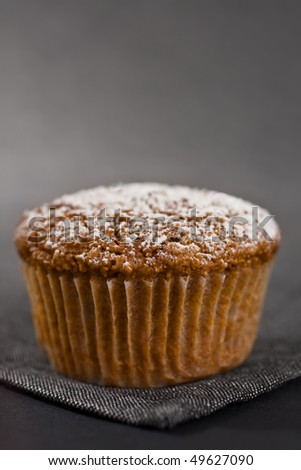 Closeup Of One Muffin On Grey Napkin - stock photo