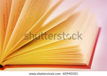Closeup of open book pages - stock photo
