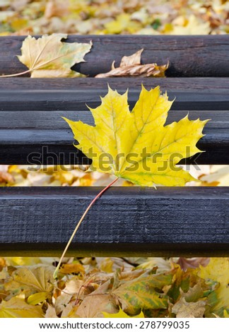 Closeup of Park bench in fall, vertical shot, shallow focus - stock photo