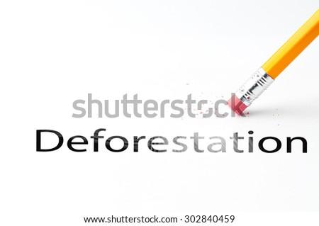Closeup of pencil eraser and deforestation text. Deforestation. Pencil with eraser. - stock photo