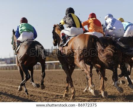 Closeup of racing horses starting a race - stock photo