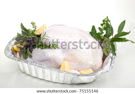 Closeup of raw uncooked turkey in roasting dish garnished with lemons, and aromatic herbs. - stock photo