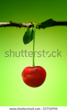 Closeup of red cherry - stock photo