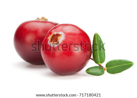 Closeup of red cranberries with leaves, isolated on the white background, clipping path included.