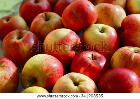Closeup of ripe red and yellow apples - stock photo