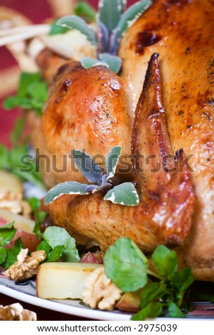 Closeup of roasted turkey served with herbs, baked potatos and walnuts on holliday table - stock photo