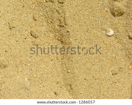 closeup of sand in El Sokhna Beach in Egypt