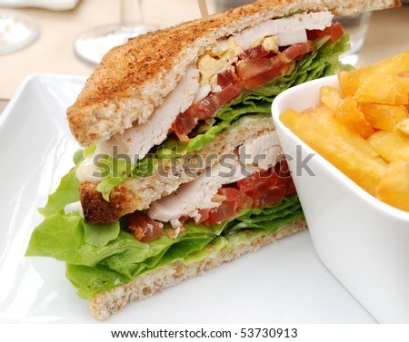 closeup of sandwich in a white plate - stock photo