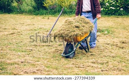 Closeup of senior man carrying wheelbarrow with dry hay on a field - stock photo