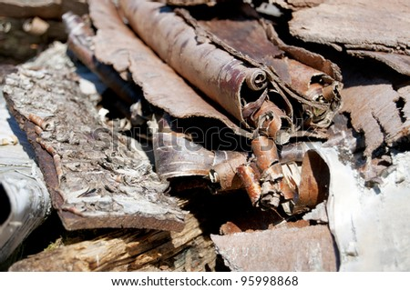 Closeup of shredded wood shavings for kindling - stock photo