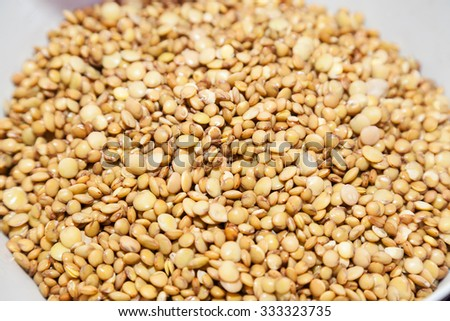 Closeup of soaked soft lentil with selective focus - stock photo