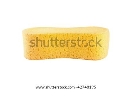 Closeup of sponge isolated on white background - stock photo