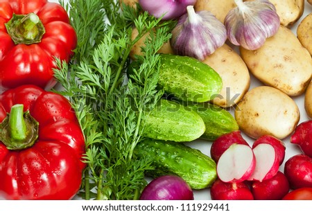 Closeup of summer vegetable assortment
