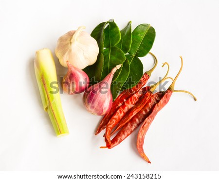Closeup of Thai ingredients, galangal, lime, lemongrass, chilli, garlic and lime leaves - stock photo
