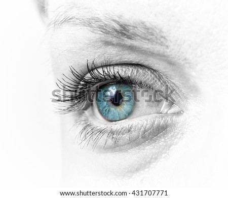 closeup of the beautiful female eye