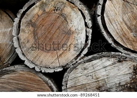 Closeup of thick logs - stock photo