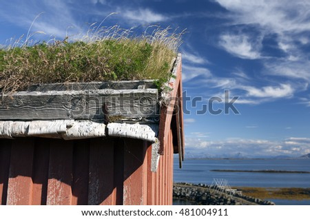 Closeup of traditional Scandinavian turf roof construction on sunny summer day in Helgeland, Vega archipelago, Norway.