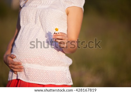 Closeup of tummy of a pregnant woman. Pregnant woman holding daisy and walking on meadow. Torso of young pregnant woman caressing her belly. Future mom expecting baby. Maternity and new life concept - stock photo