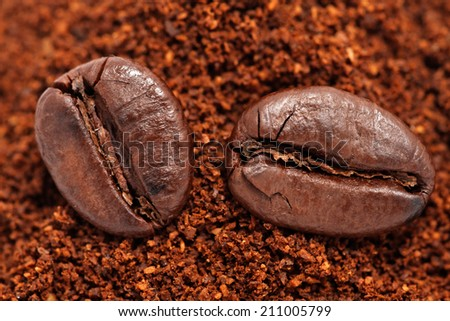 Closeup of two coffee beans at roasted coffee heap - stock photo