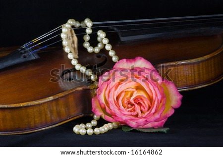 closeup of violin, rose and pearls - stock photo