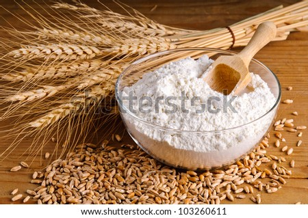 Closeup of wheat, grain and flour