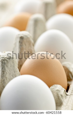 Closeup of white and brown eggs in carton - stock photo