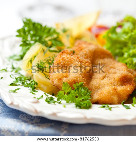 Closeup of Wiener Schnitzel on a plate - stock photo