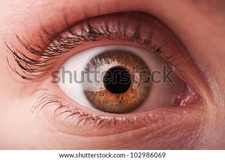 closeup of woman eye background - stock photo