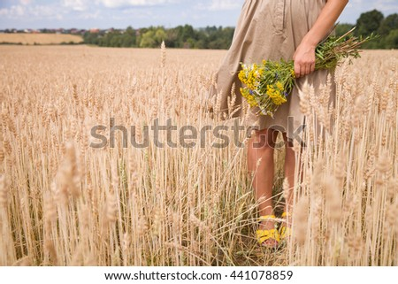 Closeup of  woman hands holding wild yellow flowers. Girl walking on the wheat field and enjoying sun. Summer background. Girl walking on the meadow. Lifestyle and happiness, freedom concept - stock photo