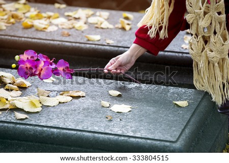closeup of woman's hand putting a flower on a grave - stock photo