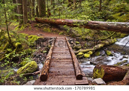 Closeup of wooden foot bridge on hiking trail in mountain over flowing river with mossy rocks./Closeup of Wooden Foot Bridge on hiking trail in mountain                               - stock photo