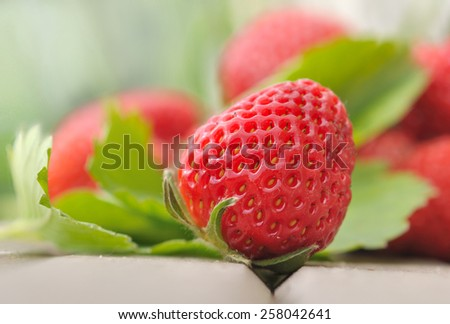 closeup on a fresh strawberry in leaf  - stock photo
