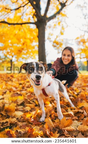 Closeup on dog on leash pulling young woman outdoors in autumn - stock photo