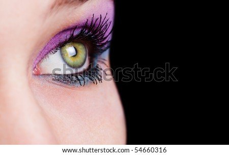 Closeup on female eye with beautiful makeup - stock photo