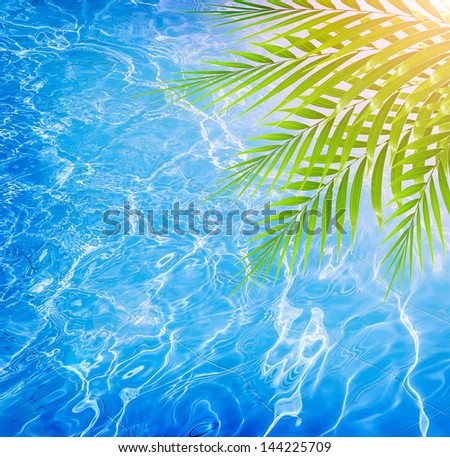 Closeup on fresh green palm tree leaves border on beautiful clean water background, pool on the tropical beach, luxury spa resort - stock photo