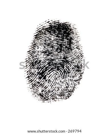 Closeup Photo of a Finger Print. - stock photo