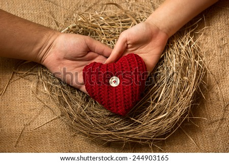 Closeup photo of couple in love holding knitted heart at nest - stock photo