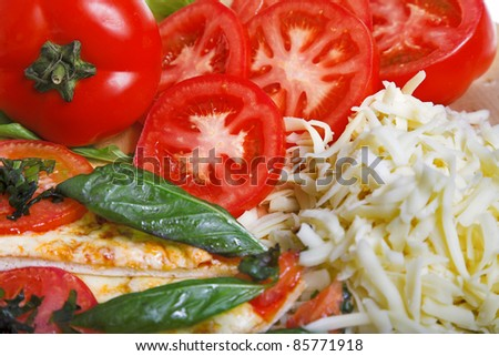 closeup photo of pizza margarita with ingredients - stock photo