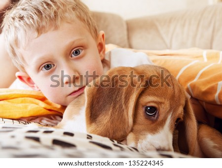 Closeup portrait boy with beagle puppy in the bed - stock photo
