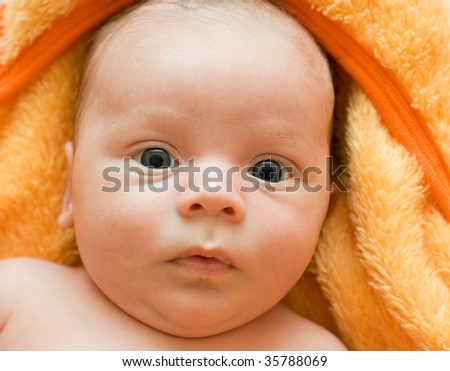 Closeup Portrait of baby boy lying at the orange blanket