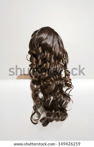 Closeup rear view of a woman with long curly brown hair against white background - stock photo