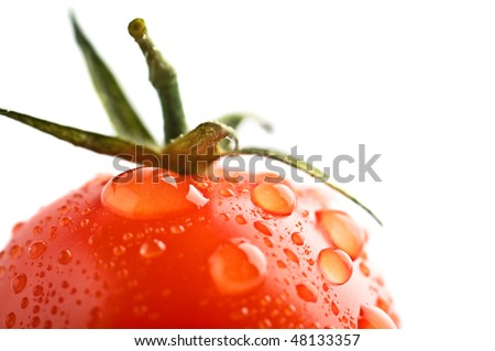 closeup ripe fresh cherry tomato's - stock photo