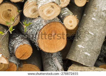 Closeup shot of a stack of cut wood. - stock photo