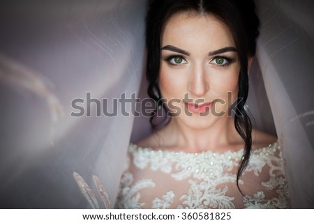 Closeup shot of an elegant, brunette bride in vintage white dress posing under veil closeup - stock photo