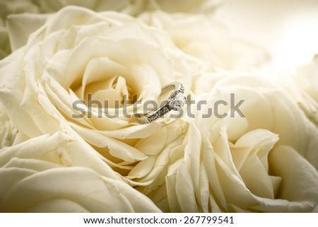 Closeup shot of beautiful engagement ring with diamond lying on white rose - stock photo